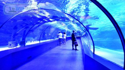 Aquarium From Belek