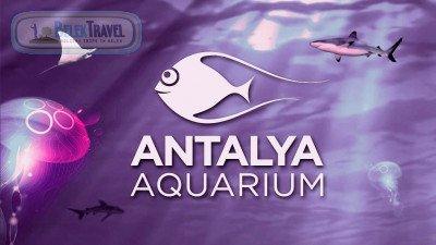 Aquarium Belek